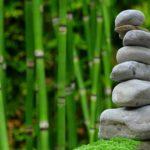 Piękny oraz porządny ogród to zasługa wielu godzin spędzonych  w jego zaciszu w toku pielegnacji.